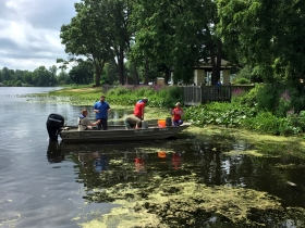 Representatives of the Kalamazoo Conservation District and the Kalamazoo Cooperative Invasive Species Management Area strike team responded to the reports of red swamp crayfish being found on Sunset Lake.