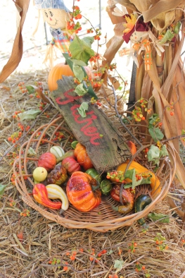 Vendors will have fall harvest vegetables and fruit for sale.