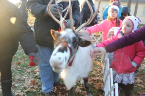 The reindeer petting zoo at the Historic Village was a real winner with kids just enthralled with petting the animals. They could then visit the 0 gauge model train display and sip on hot chocolate supplied by Karen and Mike Hill as part of the Historical Society's offering.