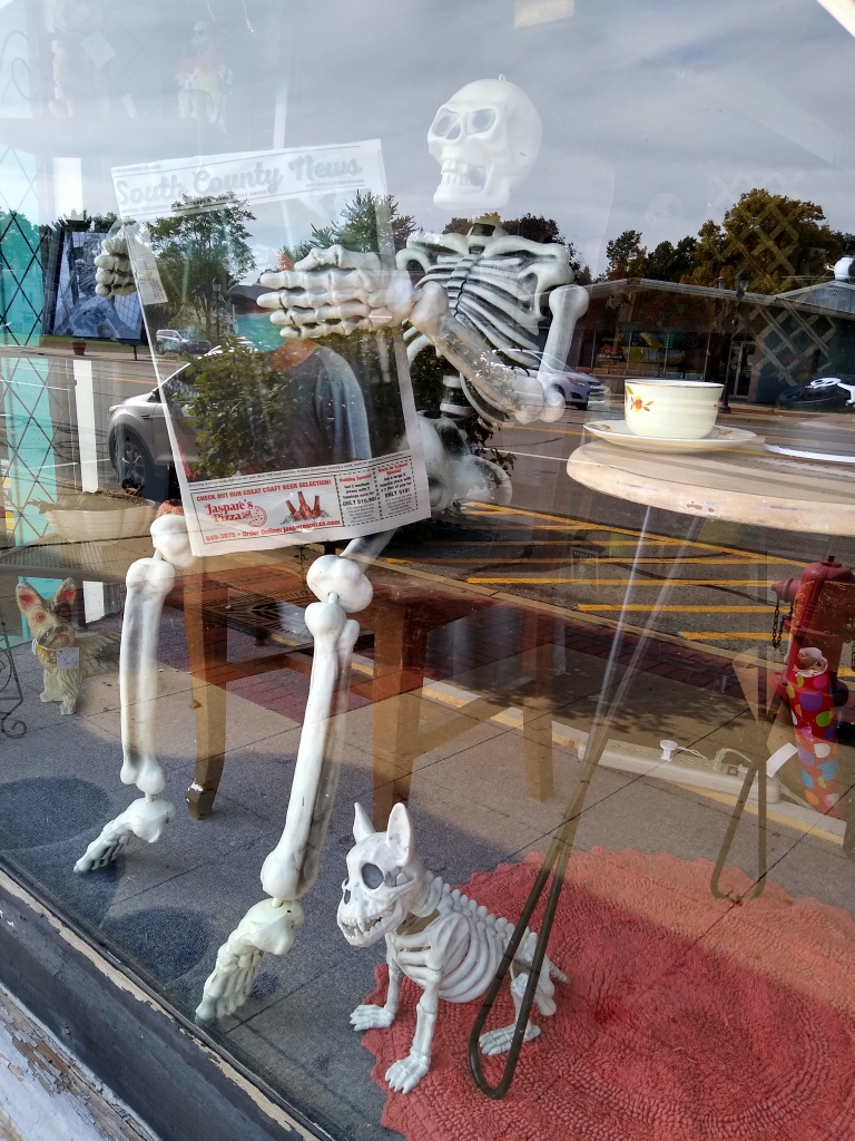 Local skeleton reads South County News.